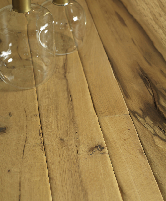 Tuscan oak from the Tuscan Apennines